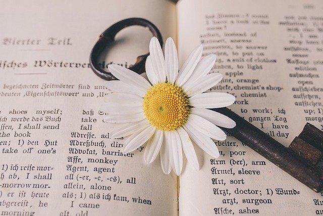 【受験対策②】教科書に出てくる単語を全て復習する